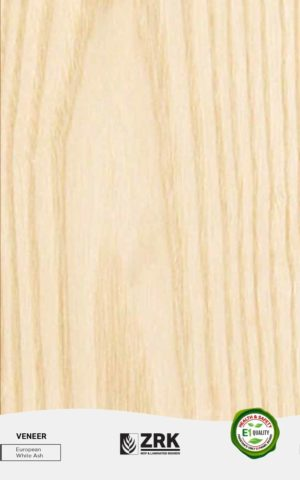 European White Ash - Wood